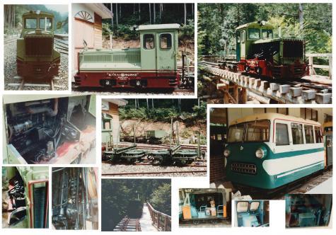 木曽森林02
