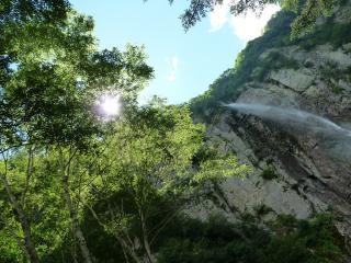 木々の間からの不動滝