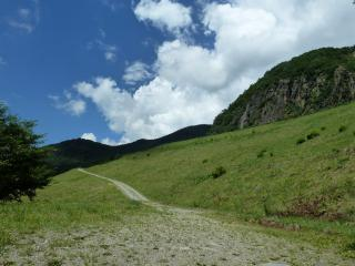 鉱山跡の坂道