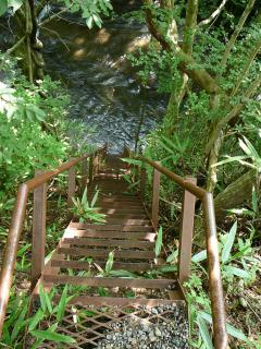 渓谷へのはしご