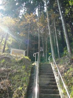 権現山 登山道の階段