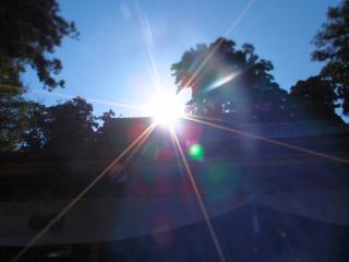 鹿島神宮 拝殿に差し込む日差し