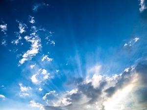 夏の光(イメージ)