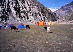 ベースキャンプを設置したタカファリ