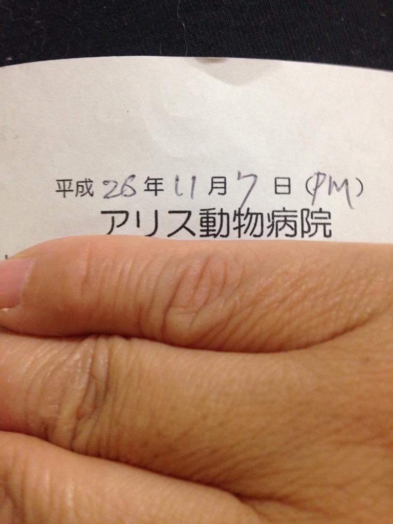 fc2blog_20141107234248146.jpg