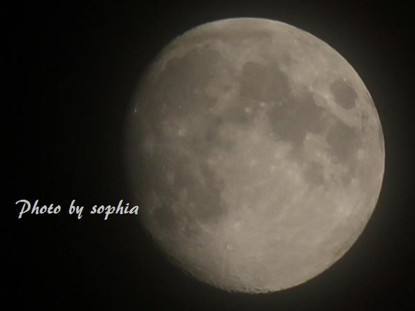 2012_10_27_3.jpg