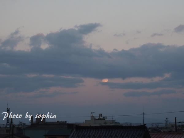 2012_10_30_2.jpg
