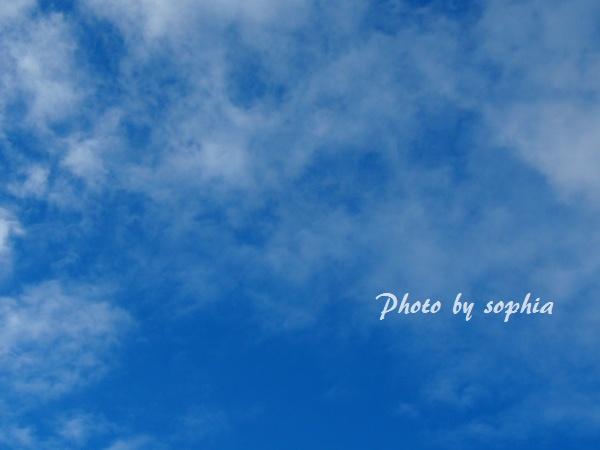 2012_10_31_2.jpg