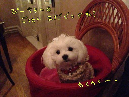 IMG_0524-1.jpg