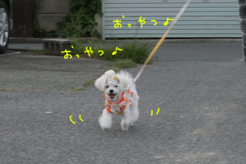 IMG_8809.jpg