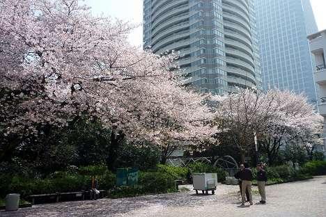 atagoyama_21.jpg