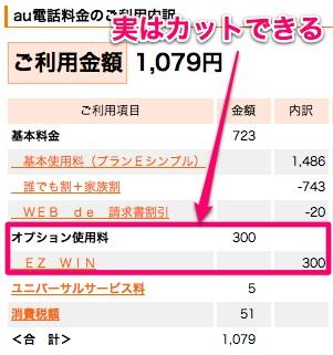 【続報】一括0円+高額キャッシュバック! 月額維持費たった764円 内訳も晒します