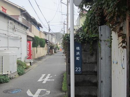 yakumo5.jpg
