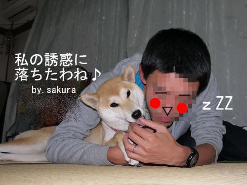 仲良しアピール4