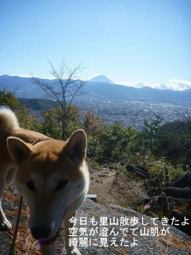 里山散歩1