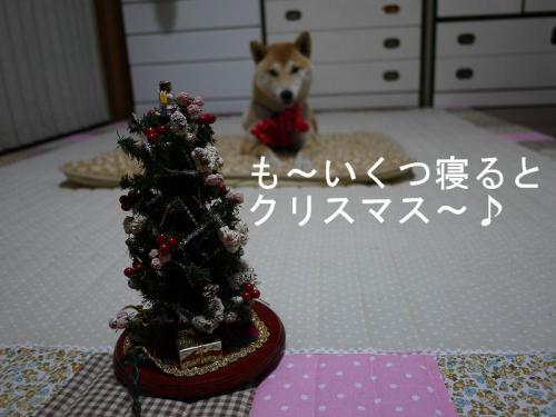 クリスマス支度
