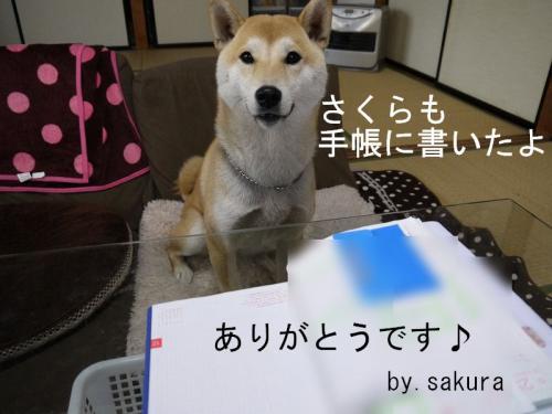 ほぼ日手帳4