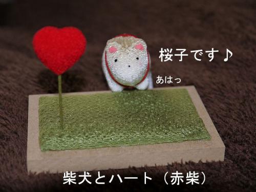 うれしい贈り物2