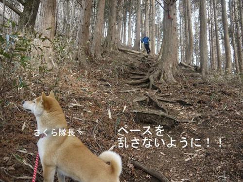鳥ノ胸山6