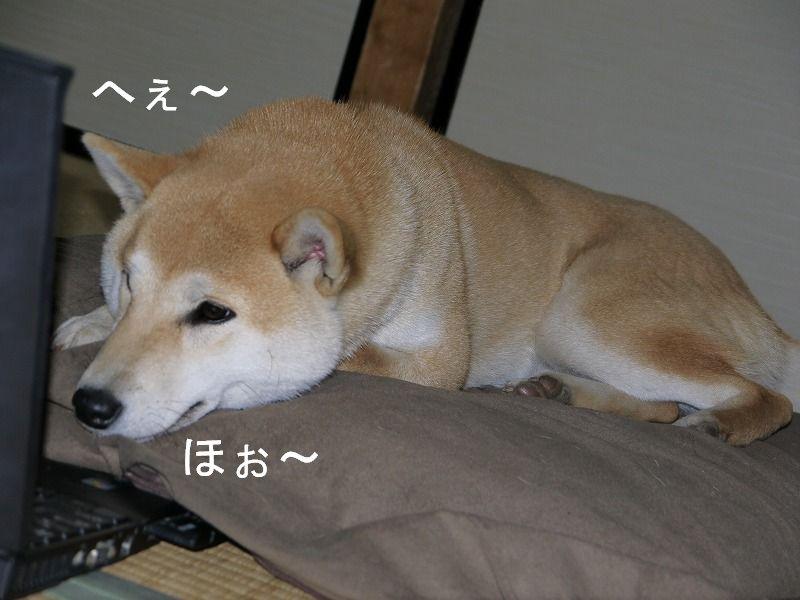 突然睡魔が!!