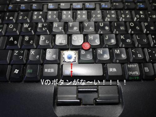 P1080431.jpg