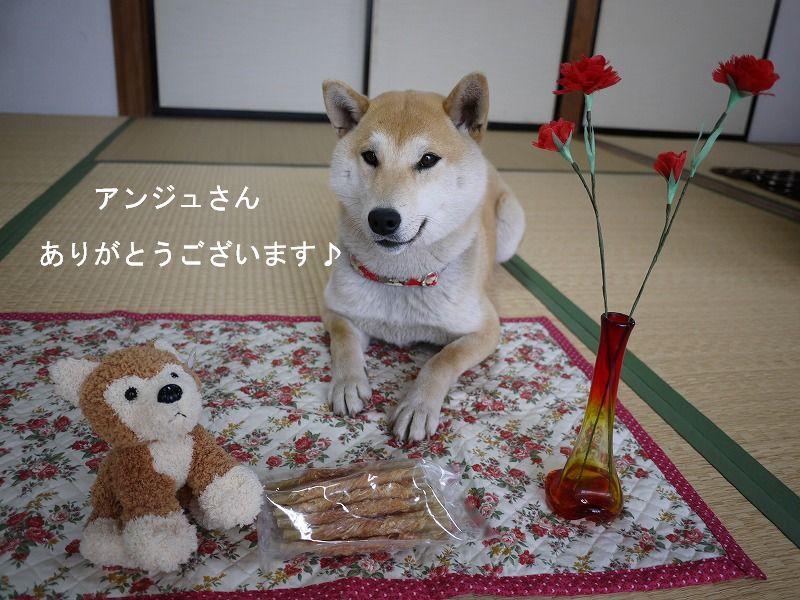 やっほほ~い プレゼントだ~!!