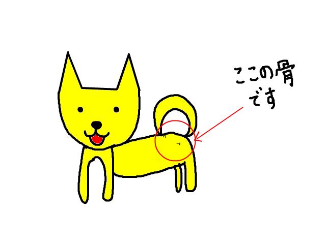 snap_sakurarako_201210194649.jpg