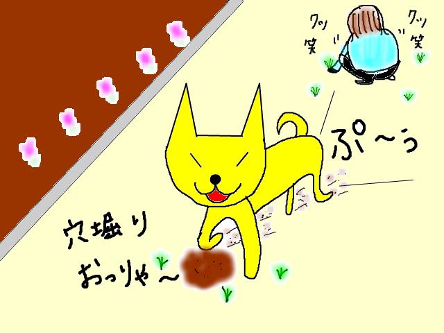 snap_sakurarako_201234202029.jpg