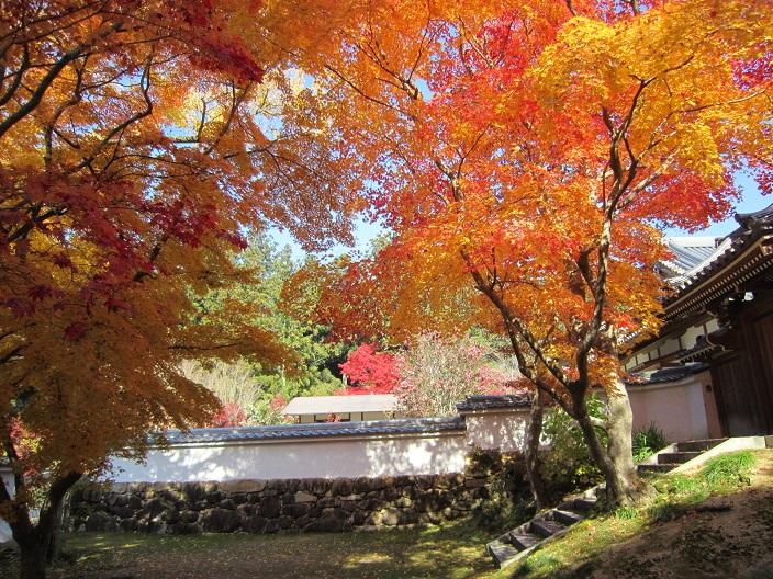 一乗寺歓喜院の紅葉