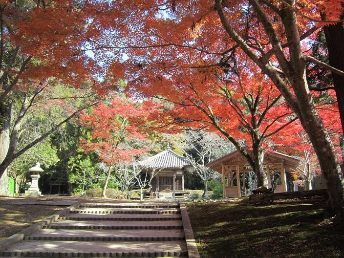 一乗寺の紅葉