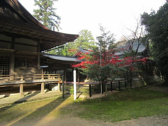 出石神社社殿