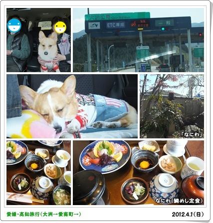 cats4_20120404015155.jpg