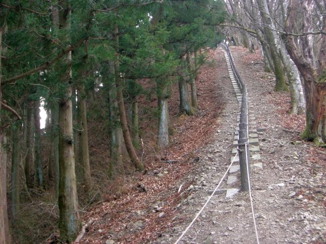 頂上直前ロープ
