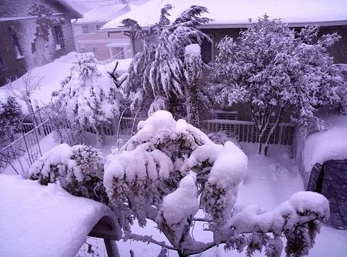 大雪による被害(栃木県消防防災課 第3報)シェア!