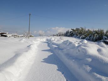 雪の後の晴天