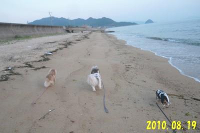 blog_import_4ef0571d6be45.jpeg